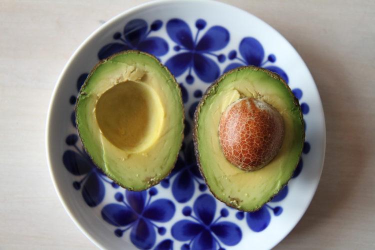 14125214302_dd49fbae6d_b_avocado-1