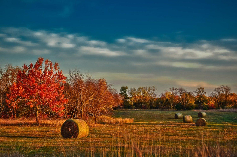 Kansas photo