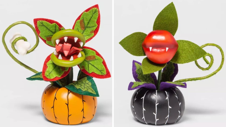 Target's Halloween succulents in pumpkin planters
